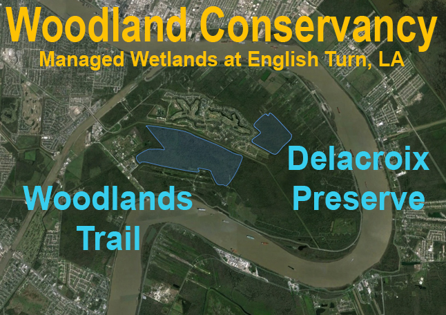 Woodlands Conservancy Properties